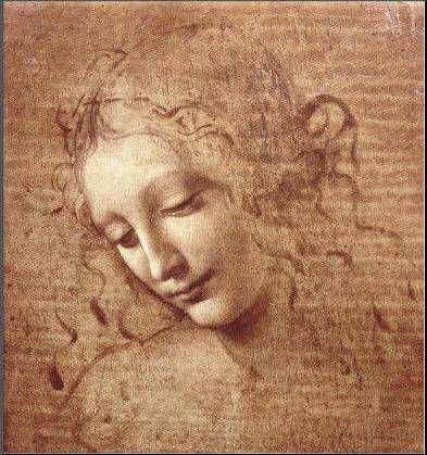 drawing-by-leonardo-da-vinci-1362494615_b