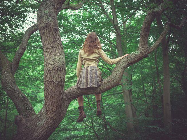 ağaça-çıkmak
